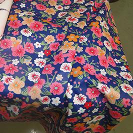 Digitālā tekstila apdrukas paraugs 1 ar digitālo tekstila printeri WER-EP7880T