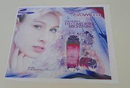 Flag Auduma baneris, izdrukāts ar 1,6 m (5 pēdu) eko šķīdinātāja printeri WER-ES160 4