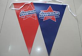 Flag Auduma baneris, izdrukāts ar 1,8 m (6 pēdu) eko šķīdinātāja printeri WER-ES1801 2