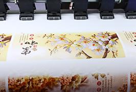 Pašlīmējošais vinils, kas izdrukāts ar 1,8 m (6 pēdu) eko šķīdinātāja printeri WER-ES1802
